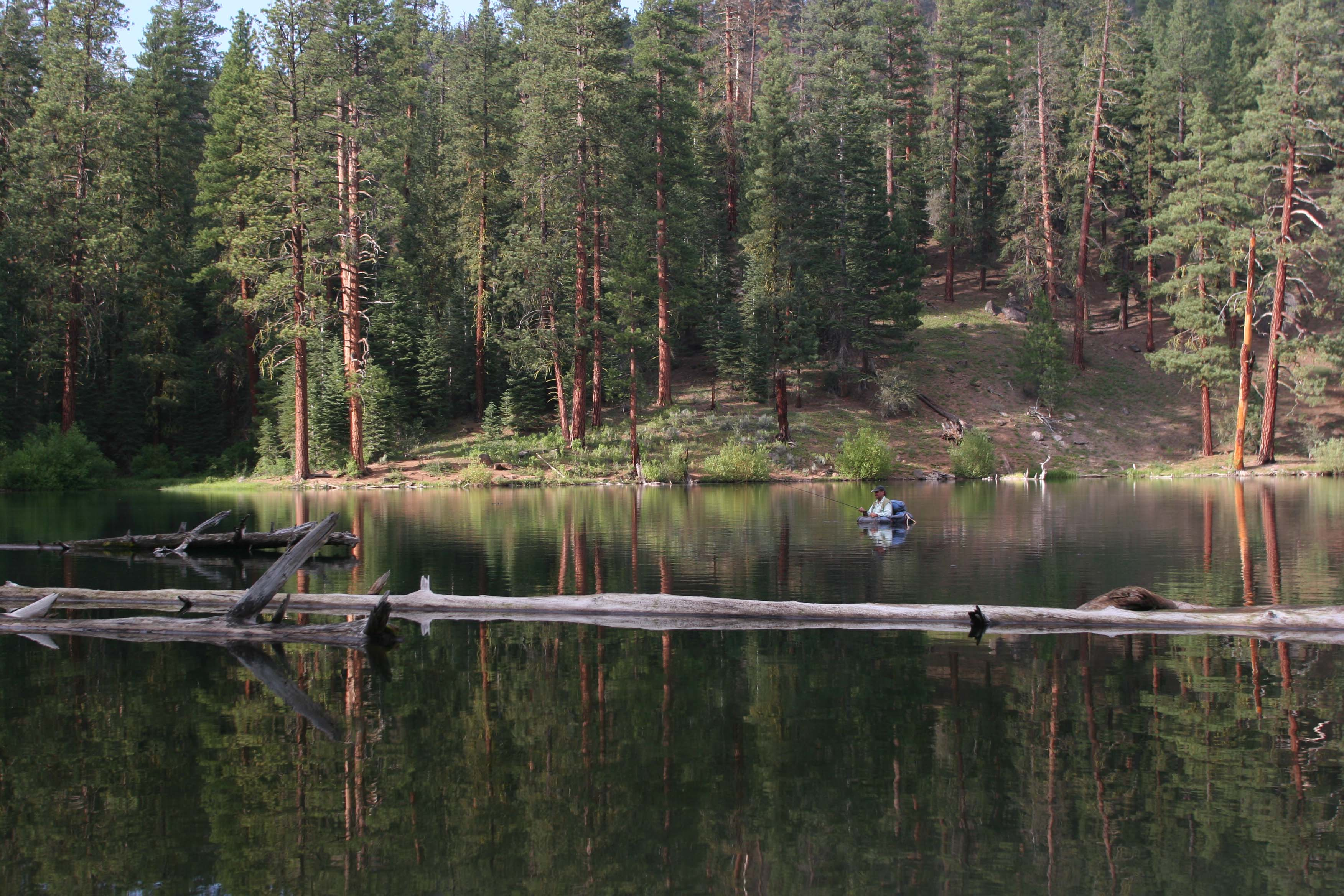 Home » Creeksides On The Fly Oregon Fly Fishing
