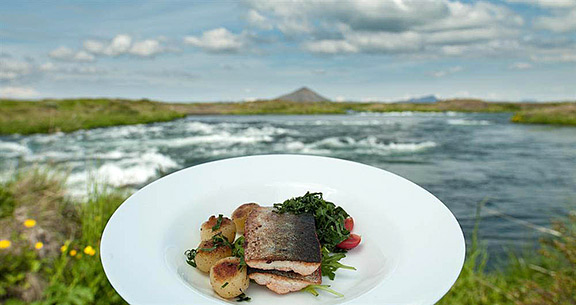 Icelandic traditional food for Urine smells like fish after eating fish